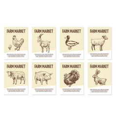 farm animals labels tags for shops of vector image