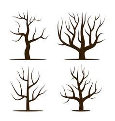 Four trees without leaves vector