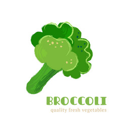 fresh broccoli isolated on white background vector image