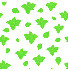 pattern with mint on white vector image