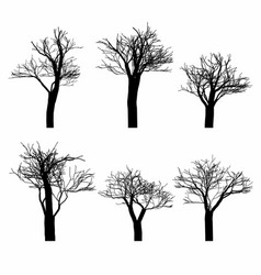 set of black naked trees silhouette set vector image