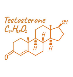 testosterone label and icon chemical formula and vector image
