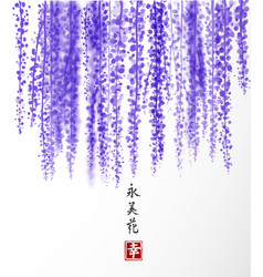 wisteria hand drawn with ink on white background vector image