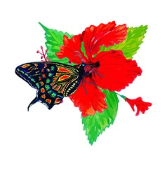Hibiscus and butterfly vector image
