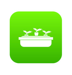 carrots in a wooden pot icon digital green vector image