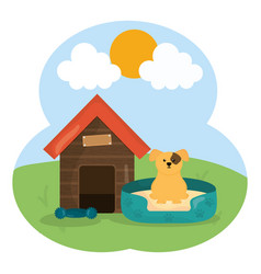 cute little dog in wooden house pet character vector image