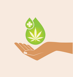 Hand holding oil drop with a marijuana leaf vector
