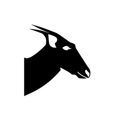 head of the cannon antelope vector image
