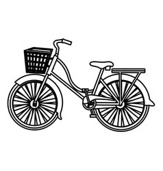 Monochrome silhouette with classic bicycle with vector