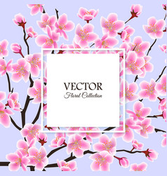 sale banner with blooming cherry flowers on blue vector image
