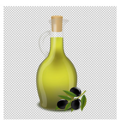 bottle of olive oil isolated transparent vector image