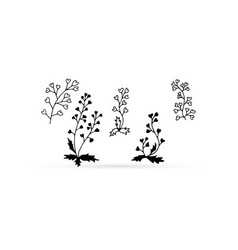 Doodle flower set icon isolated on white eco logo vector