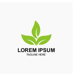 Leaf logo template design vector