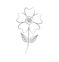 Periwinkle flower petal leaves stem nature plant vector