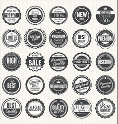 set retro vintage badges vector image