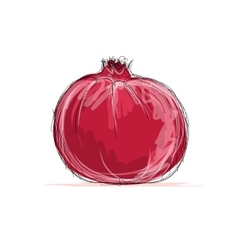Sketch of pomegranate for your design vector image