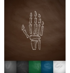 X-ray hand icon vector image