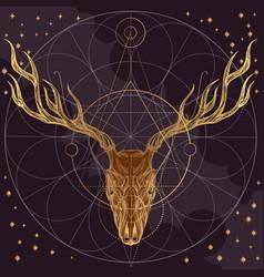 sketch of deer skull on dark purple background vector image