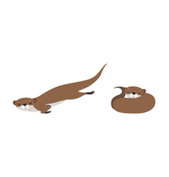 set cute weasel in various poses adorable vector image