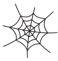 Spider web on white background vector