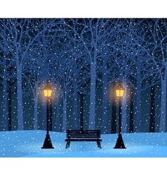 Winter park and outdoor landscape with bench vector image vector image