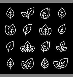 set white leaf line icons on black background vector image