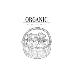Wicker Basket With Organic Vegetables Hand Drawn vector
