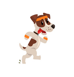 cute jack russell terrier athlete running putting vector image vector image