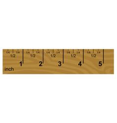 wooden inch ruler vector image