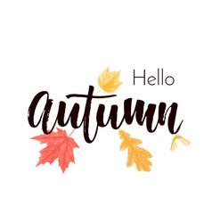 Autumn leaf fall poster maple oak acorn vector