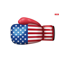 Boxing gloves with usa flag vector