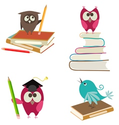 Cute bird learning vector