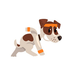 Cute funny jack russell terrier athlete character vector