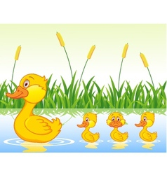 family duck cartoon vector image