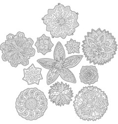 floral abstract patterns for coloring book pages vector image