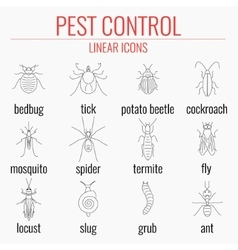 Pest control icon set with names insects vector