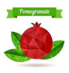 Pomegranate vector