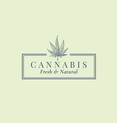 premium quality cannabis abstract sign vector image