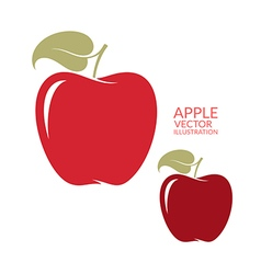 Red apple Isolated fruit on white background vector image