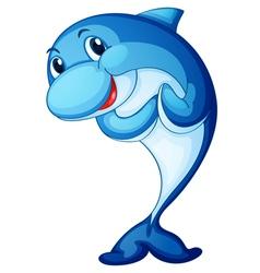 shark fish vector image