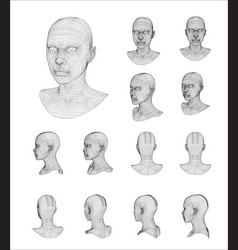 Wireframe head 3d model vector