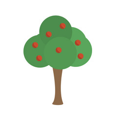 tree apple fruit nature image vector image
