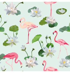 Flamingo Bird and Waterlily Flowers Background vector image vector image