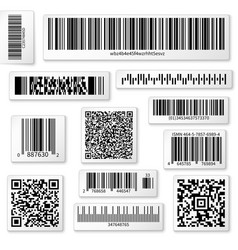 Packaging labels bar and QR codes on white vector image