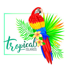 tropical island composition with parrot leaves vector image vector image