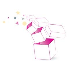 magic box packaging vector image vector image