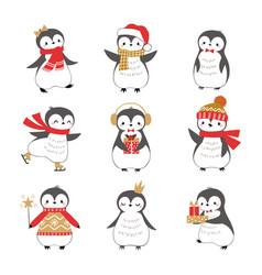 christmas sweet little bird penguins vector image