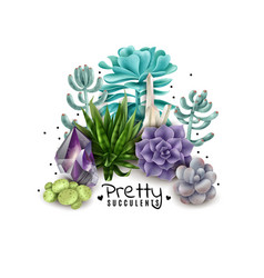Isolated colored succulents vector