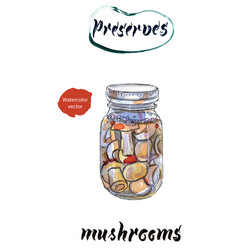 Mushrooms watercolor vector