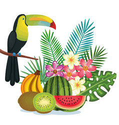Tropical garden with fruits and toucan vector